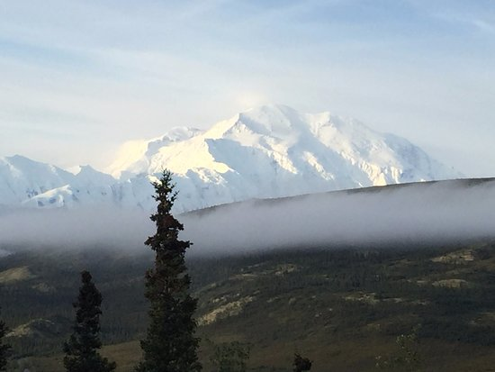 Camp Denali: View of Denali from our cabin