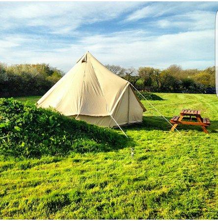 Cornworthy, UK: Higher Broadgates Camping