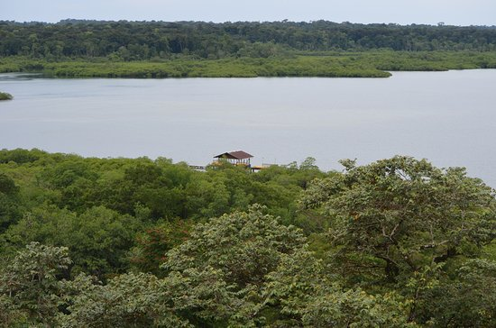 Tranquilo Bay Eco Adventure Lodge: View of the lodge's dock from the tower