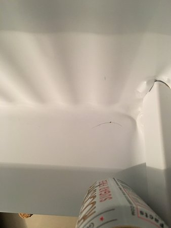 Coralville, IA: Hair in the refrigerator of room 101.