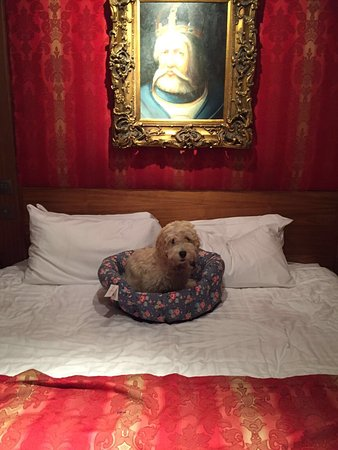 Hallmark Chester The Queen, BW Premier Collection: photo0.jpg