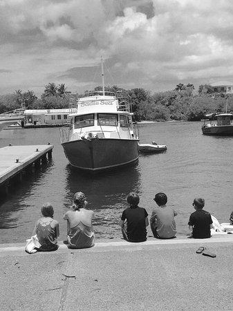 Sadie Sea Charters: photo0.jpg