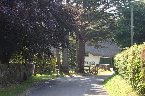 Winterborne Zelston, UK: Village
