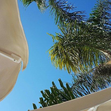 Porto Platanias Beach Resort & Spa: IMG_20160821_225334_large.jpg