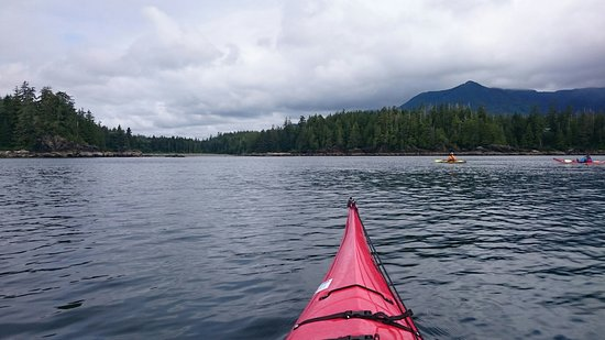 Ucluelet, Canadá: Few shots from our fantastic day on the water and the lovely lunch spot.
