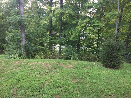 Sutton, Δυτική Βιρτζίνια: photo7.jpg