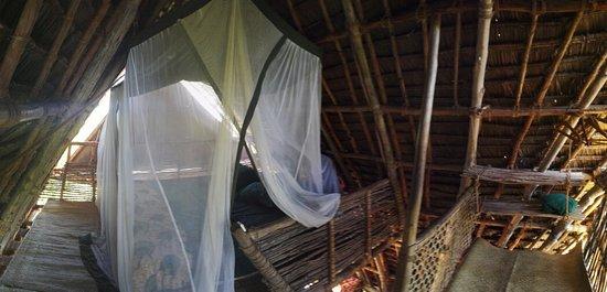 Chumbe Island Coral Park: IMG_20160817_161201_large.jpg