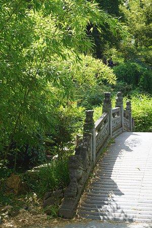 Chinesischer Garten - Bild von Chinesischer Garten ...
