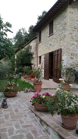 Valtopina, Italia: Agriturismo Casa Brunori