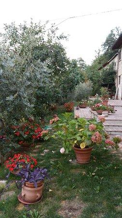 Valtopina, Italië: Agriturismo Casa Brunori