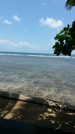 Calibishie, Dominica: 20160722_115510_large.jpg