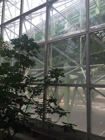 Biosphere 2: photo9.jpg