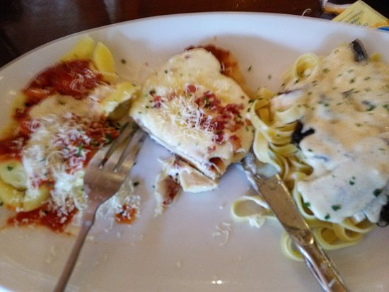 olive garden olympia restaurant reviews phone number photos tripadvisor