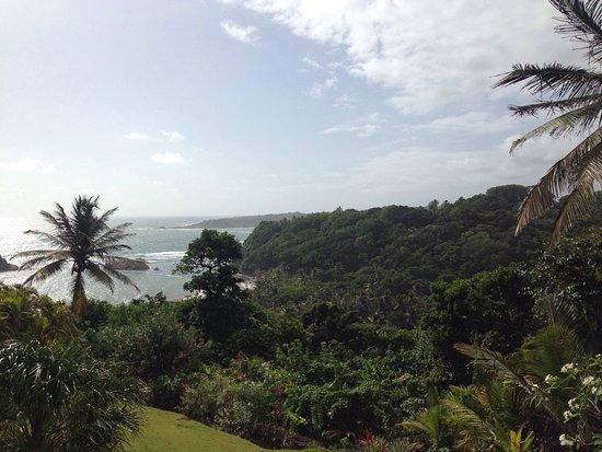 Calibishie, Dominica: photo0.jpg