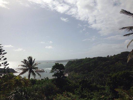 Calibishie, Dominica: photo1.jpg