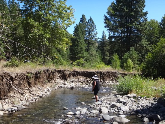 Ellensburg, Waszyngton: fishing along Taneum creek 3rd location