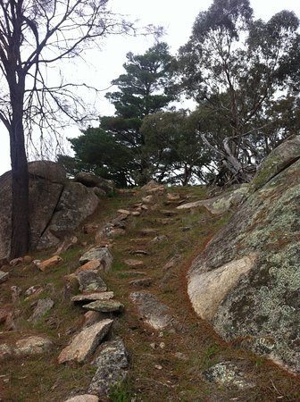 Mount Beckworth Scenic Reserve