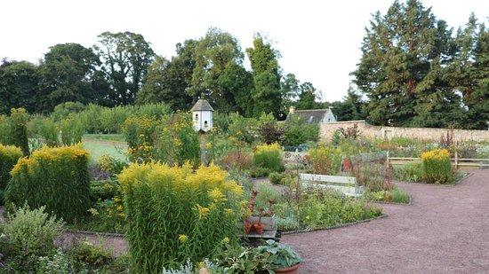 Nairn, UK: The garden (open to guests)