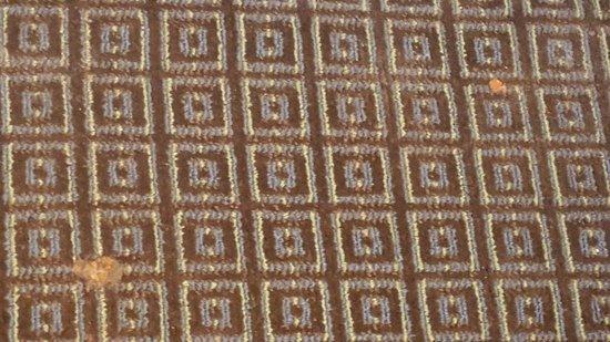 Essington, Πενσυλβάνια: The carpet in the room