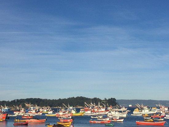 Talcahuano, Chile: Lindo día en Caleta Tumbes