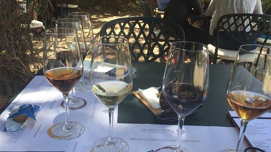Northern Portugal, Portugal: Wine House Quinta Nova
