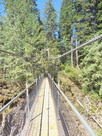 Zdjęcie Oregon Coast