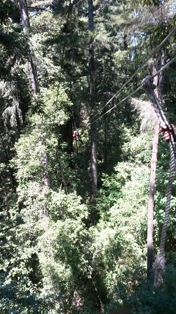 Felton, CA: Mount Hermon Adventures Zipline