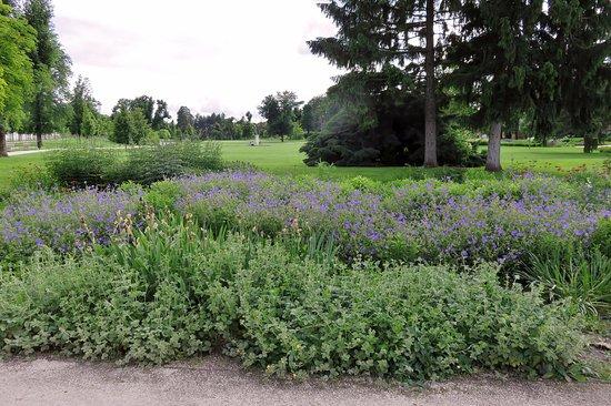 Godollo, Hungria: View of the garden