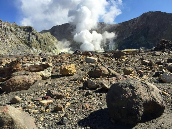 Whakatane, Selandia Baru: IMG-20160821-WA0042_large.jpg