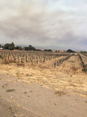 Santa Ynez, Калифорния: photo2.jpg