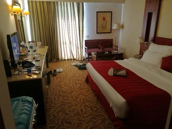 사피르 호텔 카이로 이미지