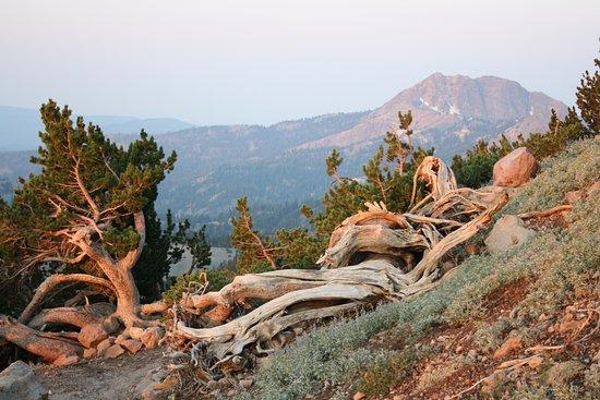 Mineral, Californië: Lassen Peak Trail.