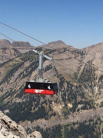 Jackson Hole Aerial Tram: photo1.jpg