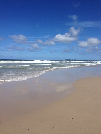 North Coast Holiday Parks Terrace Reserve: Surf Beach - You can walk for hours on firm sand