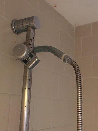 Spindrift Hotel: Bagno e frigorifero: disgustosi!!!!!