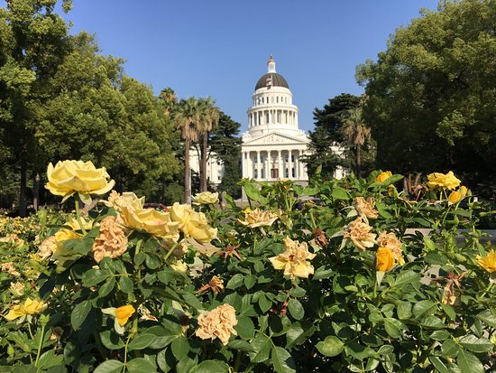California State Capitol and Museum: Wow breath taking