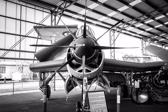 Caloundra, Avustralya: Fairey Gannet AS Mk 1 XA331