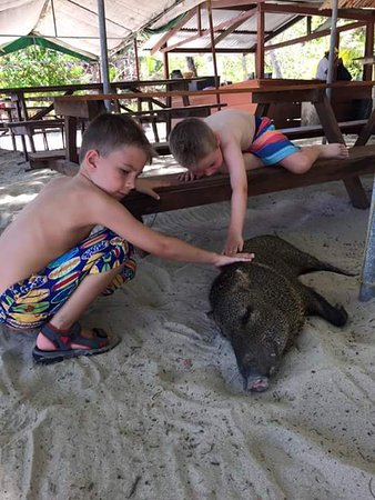 Tambor, Kostaryka: Tortuga Island