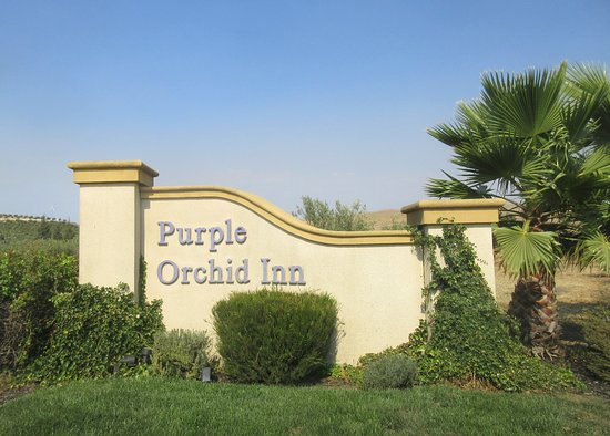 The Purple Orchid Wine Country & Spa: Purple Orchid Inn, Livermore, Ca
