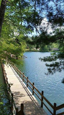 Tallulah Falls, GA: FB_IMG_1471828809638_large.jpg