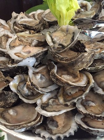 Lake Forest, IL: Oysters are yummy