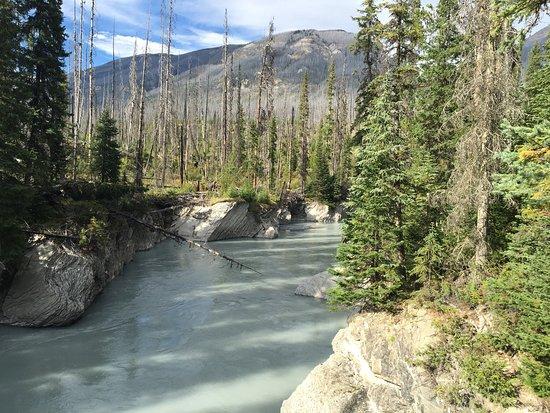 Kootenay National Park, Kanada: photo5.jpg