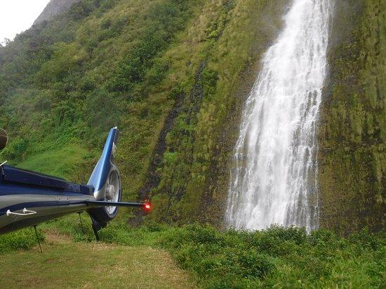 Waikoloa, Χαβάη: Waterfall at waterfall landing (paid extra)