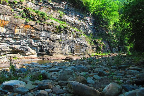 Forksville, Πενσυλβάνια: Loyalsock Creek at day use area