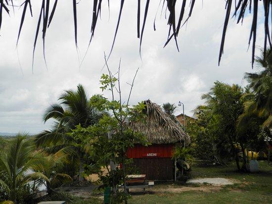 Palmento Grove Cultural & Fishing Lodge: Areini Room