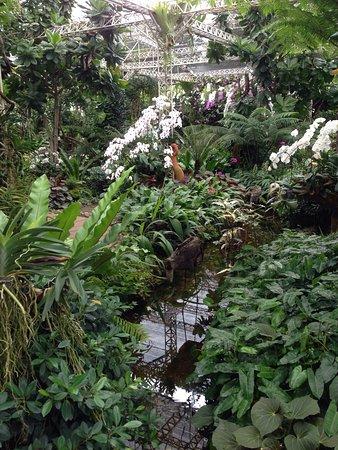Royal Park Rajapruek: photo6.jpg