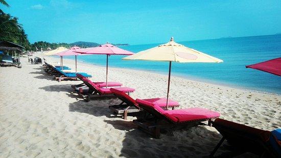 Mae Nam, Tailandia: IMG_20160820_082444_large.jpg