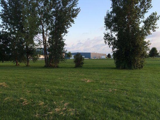 Waterloo, IA: Field next to hotel that is great for dog walking