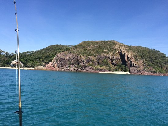 Mossman, Австралия: Great day out fishing. Not only did we catch fish, we also saw croc's, whales, turtles, manta Ra
