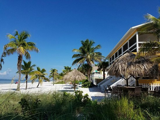 Tiki on the Beach: Ocean front building side view